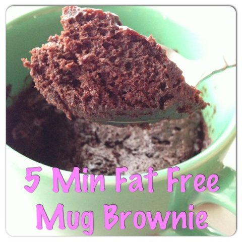 Fat Free Mug Brownie