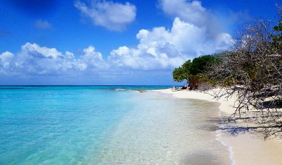 Buck Island, St Croix