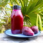 Homemade Prickly Pear Cactus Juice